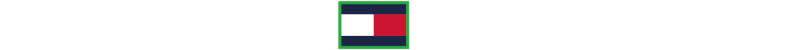 TommyHilfiger_MakeItPossible_SecondaryLogo_REVERSED_RGB